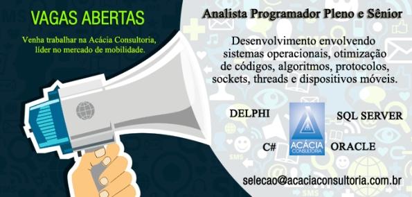 Acácia Consultoria contra Analista/Programador